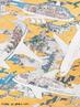 Obra de Akira Yamaguchi que mostra grandes aeronaves sobrevoando o Aeroporto de Narita envolvidas por uma mistura de nuves douradas e fumaça tóxica, em referência aos graves efeitos da poluição agravada pela industrialização japonesa. <br/> Palavras-chave: Akira Yamaguchi, Aeroposto Internacional de Narita: várias cenas curiosas de aviões, pintura.
