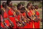 Nas danças africanas há o hábito de se manter os pés nus em contato direto com a terra, com o intuito de absorver as energias deste lugar. Entre as danças, destacam-se: lundu, batuque, ijexá, capoeira, coco, congadas e jongo. <br/><br/> Palavras-chave: dança africana, mulheres dançando, lundu, batuque, capoeira, congada