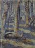 Pintura do artista paranaense Miguel Bakun. Técnica: óleo sobre tela com dimensões de 51 x 42 cm <br/> Palavras Chave: Miguel Bakun, pintura paranaense