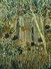Pintura do artista paranaense Miguel Bakun. Técnica: óleo sobre tela com dimensões de 54,5 x 45 cm <br/> Palavras Chave: Miguel Bakun, pintura paranaense
