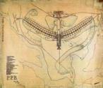 O projeto do Plano Piloto da construção de Brasília, feito por Lúcio Costa, consiste em um desenho em forma de cruz, com os braços curvos, como as asas abertas de um pássaro. No eixo vertical, o espaço é reservado para os edifícios do governo e estabelecimentos como hotéis, bancos, teatros, indústrias. No eixo horizontal ou braços curvos localiza-se as superquadras, grandes quarteirões residenciais, onde situam-se prédios de apartamentos, escolas, igrejas entre outras coisas que os moradores de um bairro precisam ter.