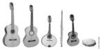 Choro ou chorinho é um ritmo musical bastante popular no Brasil, especialmente em São Paulo e Rio de Janeiro, composto pelo som de seis instrumentos musicais aqui representados.
