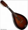 Instrumento musical de corda existente desde o séc. XVI, tendo a sua origem na Itália.